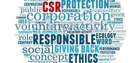 Critical literature review on csr dissertation